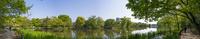 石神井公園・石神井池(南側よりパノラマ)