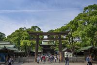 明治神宮・第三鳥居と御社殿の入口