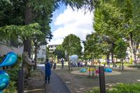 練馬区立美術の森緑地(園内の様子)