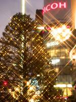 銀座のクリスマス 10511004835| 写真素材・ストックフォト・画像・イラスト素材|アマナイメージズ