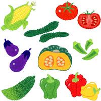 野菜/果菜類 10514000069| 写真素材・ストックフォト・画像・イラスト素材|アマナイメージズ