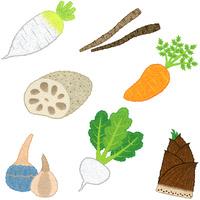 野菜/根菜類 10514000070| 写真素材・ストックフォト・画像・イラスト素材|アマナイメージズ