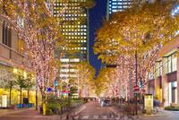 東京,丸の内の夜景 10517000575  写真素材・ストックフォト・画像・イラスト素材 アマナイメージズ