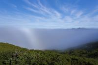 知床峠の雲海と白い虹