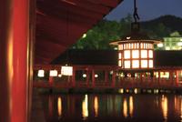 夜の厳島神社 10521002850| 写真素材・ストックフォト・画像・イラスト素材|アマナイメージズ