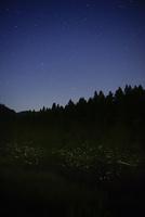 夏の星座とゲンジボタル