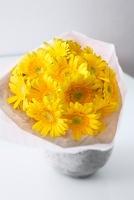 複数の黄色のガーベラの花