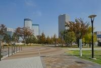 豊洲公園 10548000310  写真素材・ストックフォト・画像・イラスト素材 アマナイメージズ