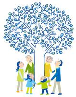 未来を見つめる家族の木 10559000126| 写真素材・ストックフォト・画像・イラスト素材|アマナイメージズ