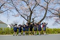 桜の咲く道で手をつなぐ新一年生と新入園児