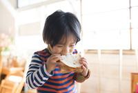 トーストを食べている男の子
