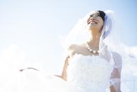 笑っているウェディングドレス姿の女性 10568004005| 写真素材・ストックフォト・画像・イラスト素材|アマナイメージズ