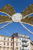 ニースのカーニバルの飾り物 10573001450| 写真素材・ストックフォト・画像・イラスト素材|アマナイメージズ