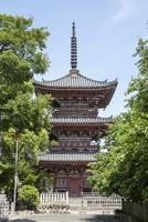 鳳凰山甚目寺(甚目寺観音)の三重塔