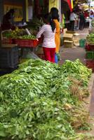 リトルインディア,店先の葉野菜