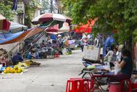 ベトナム,バッチャン村 10583008881| 写真素材・ストックフォト・画像・イラスト素材|アマナイメージズ