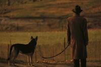 犬を連れた男性の後ろ姿 マンハッタン