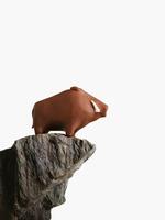 崖の上のイノシシ 10610000956| 写真素材・ストックフォト・画像・イラスト素材|アマナイメージズ