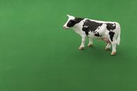 世界地図模様の牛 ミニチュア 10610001487| 写真素材・ストックフォト・画像・イラスト素材|アマナイメージズ