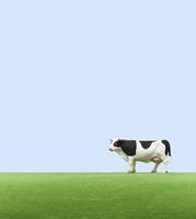 牧場の牛 ミニチュア