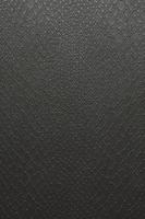 リザード(とかげ)のうろこ模様 フェイク 10610001902| 写真素材・ストックフォト・画像・イラスト素材|アマナイメージズ