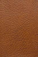 牛革 10610001903| 写真素材・ストックフォト・画像・イラスト素材|アマナイメージズ