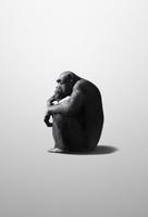 考えるチンパンジー