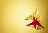 ゴールドと赤のクジャク鶴