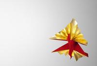 ゴールドと赤のクジャク鶴 10610003218| 写真素材・ストックフォト・画像・イラスト素材|アマナイメージズ