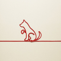 赤い紐でつくった犬(戌)のイメージ 10610003799| 写真素材・ストックフォト・画像・イラスト素材|アマナイメージズ