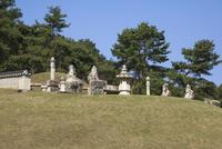 朝鮮王陵の東九陵の遺跡(徽陵)