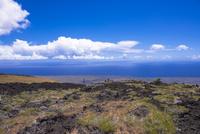 キラウエア火山の溶岩台地