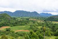 ビニャーレス渓谷の田園風景