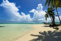 ロック・アイランドのサンゴ礁の海 10616007511| 写真素材・ストックフォト・画像・イラスト素材|アマナイメージズ