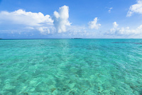 ロック・アイランドのサンゴ礁の海 10616007517| 写真素材・ストックフォト・画像・イラスト素材|アマナイメージズ
