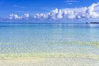 ロック・アイランドのサンゴ礁の海 10616007588| 写真素材・ストックフォト・画像・イラスト素材|アマナイメージズ