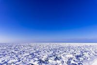 オホーツク海の流氷 10616008327  写真素材・ストックフォト・画像・イラスト素材 アマナイメージズ