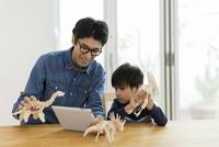 恐竜の模型で遊ぶ親子