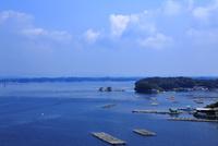 夏の英虞湾