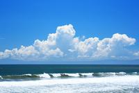夏の湘南の海と入道雲