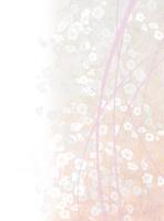 和紙に梅 10635000018| 写真素材・ストックフォト・画像・イラスト素材|アマナイメージズ