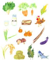 食材イラスト集 10645000017| 写真素材・ストックフォト・画像・イラスト素材|アマナイメージズ