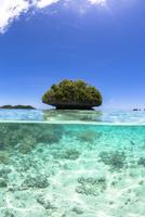 半水面で見た珊瑚の島