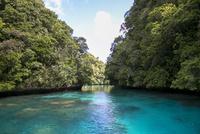 水面に見える珊瑚と島々