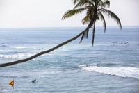 海でサーフィンする人々