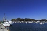 横須賀市 佐島漁港