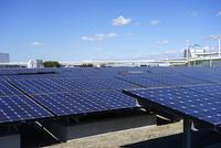 川崎市の浮島太陽光発電所 10669001690| 写真素材・ストックフォト・画像・イラスト素材|アマナイメージズ