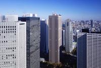 新宿副都心の高層ビル群