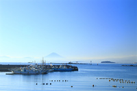 神奈川県,真名瀬漁港から見える富士山