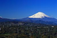 湘南平からの富士山 10669002031  写真素材・ストックフォト・画像・イラスト素材 アマナイメージズ